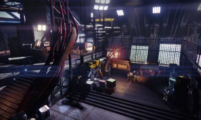 Have You Seen the Days Without Incident Counter in Destiny 2